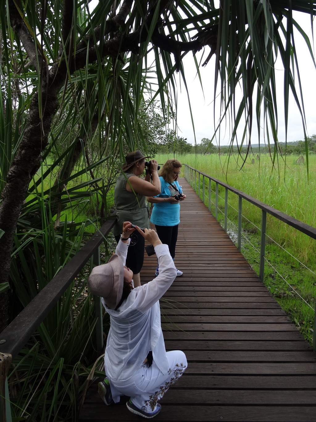 Margarita, Judy and Jenny capturing memories at the Litchfield Park magnetic termites boardwalk
